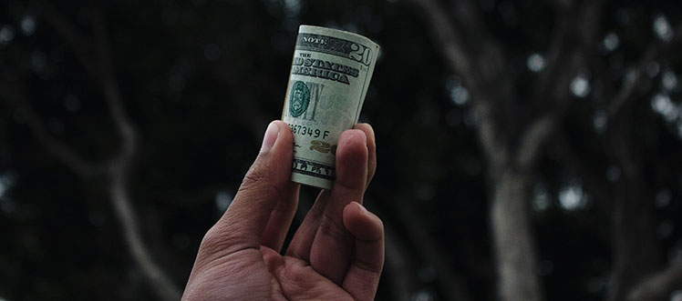 Trump Skinny Budget