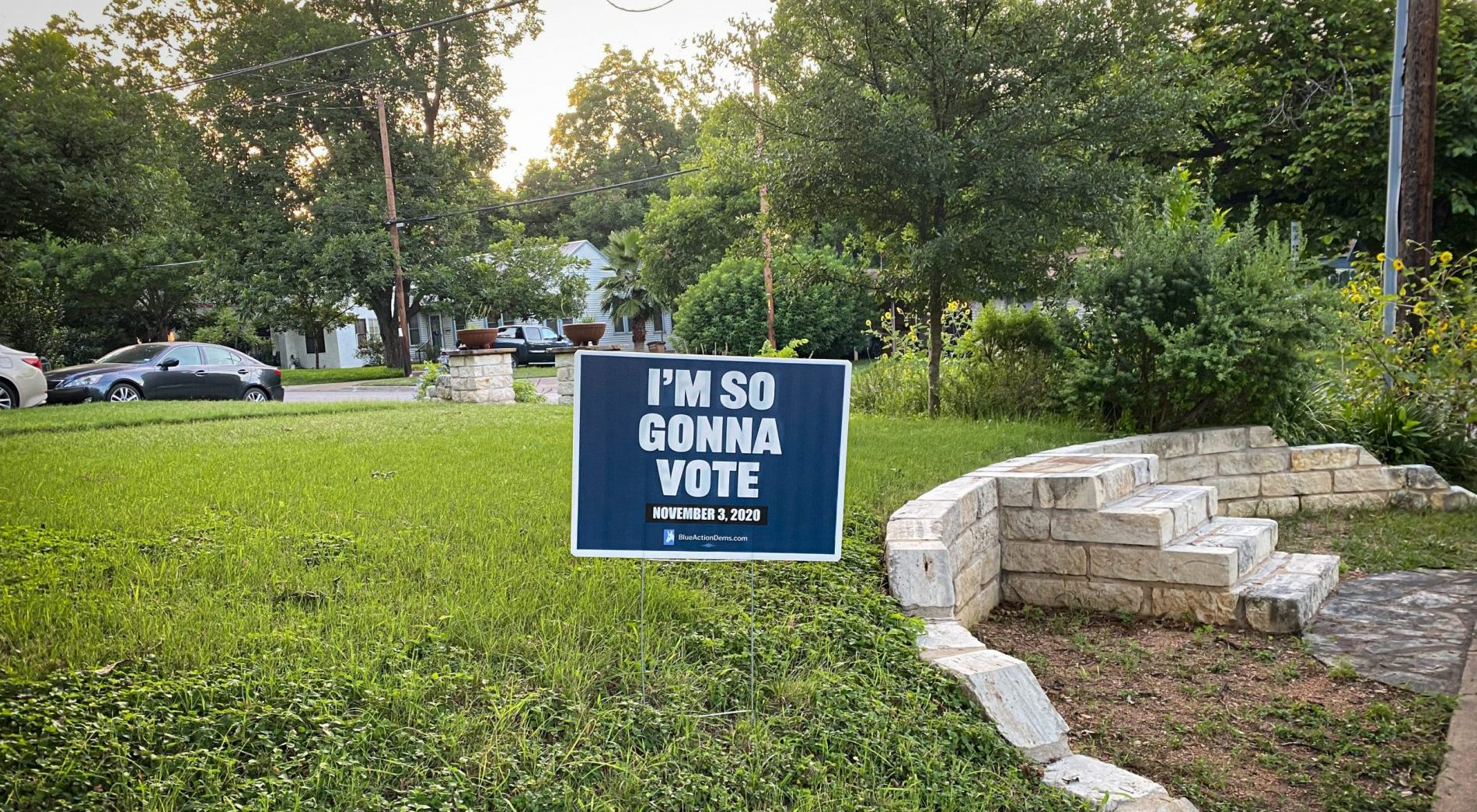 "Blue campaign yard sign with white letters, on a lawn, saying ""I'm So Gonna Vote."""