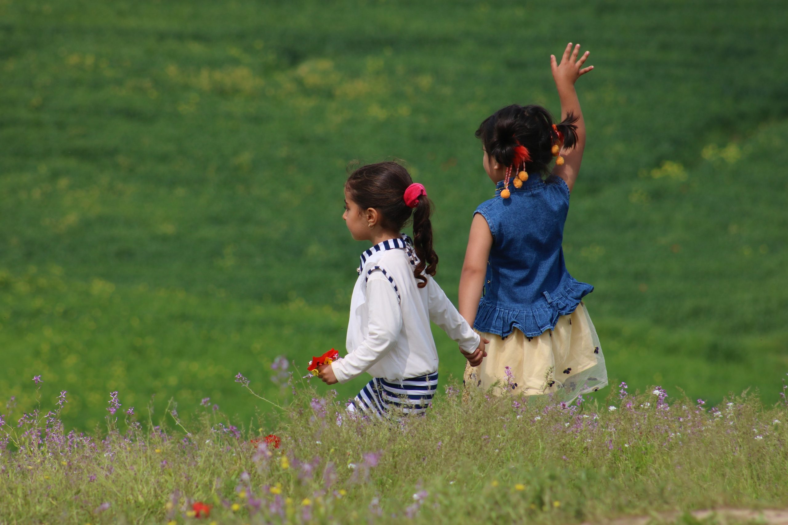 Two girls under age 5 holding hands in a field of wildflowers, facing away from the camera. One girl is waving.